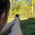 How To Aim A Pistol With 3 Dot Sights - Improve Your Marksmanship