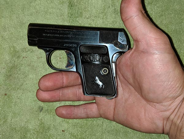 size of pocket pistol in palm of hand